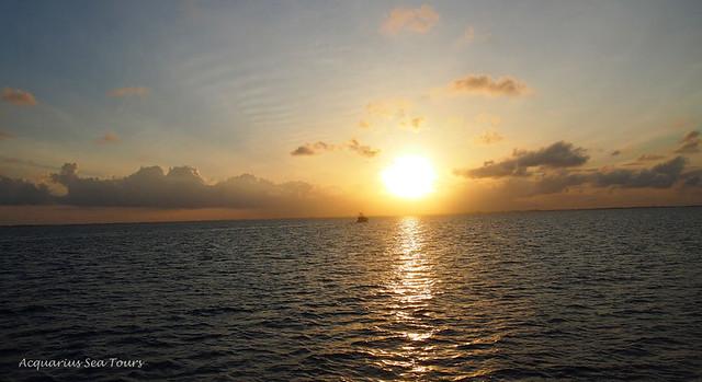 Cayman Island Tours