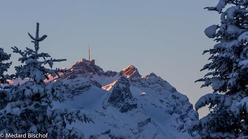 winter snow sunrise schweiz switzerland ostschweiz neujahr säntis hoherhirschberg appenzellinnerrhoden rüte
