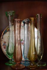 Vases......a dime a dozen 20/365