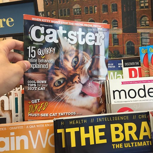 With magazines like this, print will never die. #print #cats #catsofınstagram