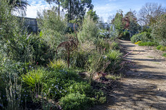 Monbulk garden