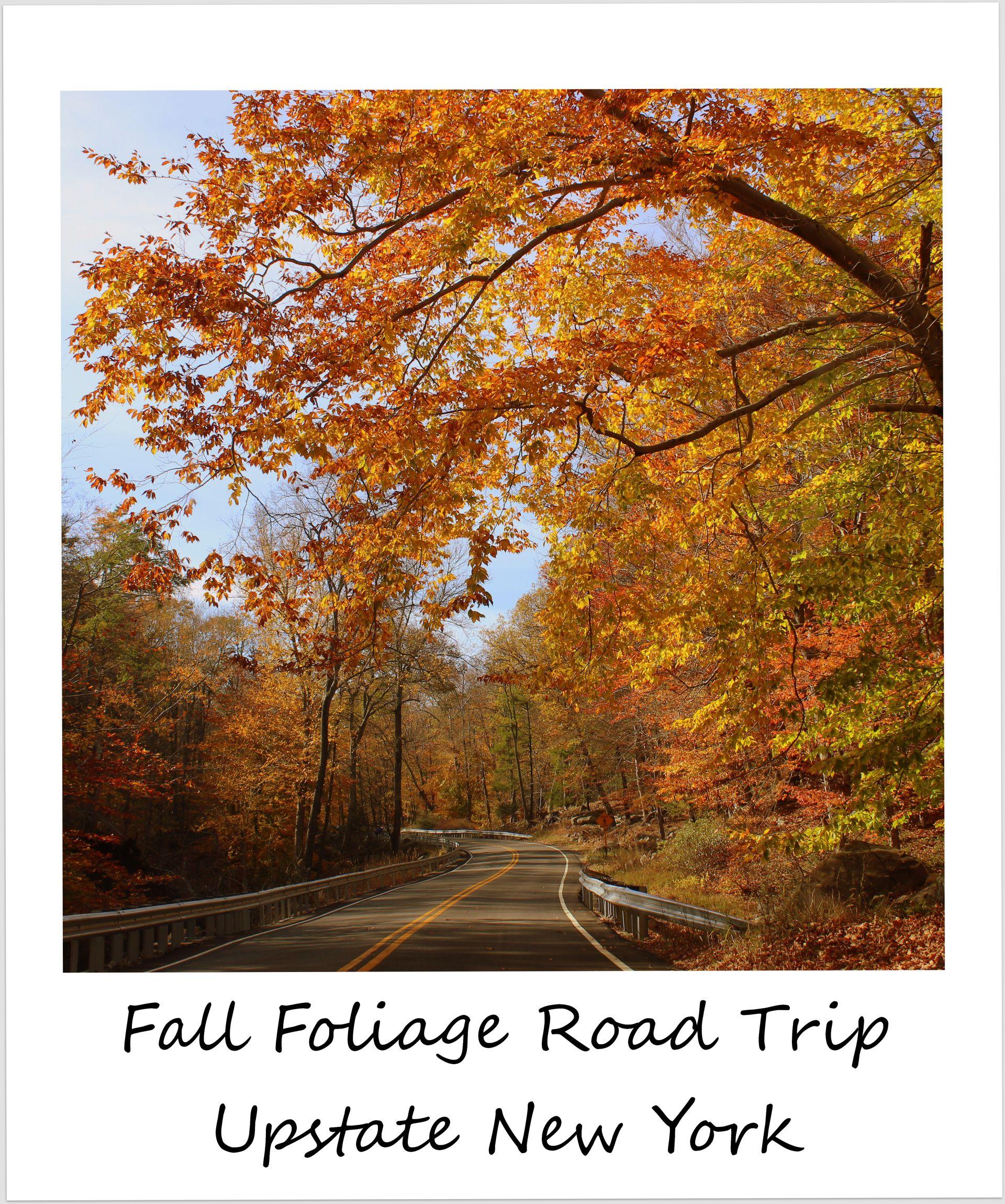 polaroid of the week usa new york fall foliage road trip