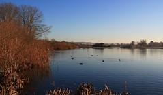 Landscape - Wiltshire