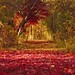 Audubon Topsfield by SarahRydgren