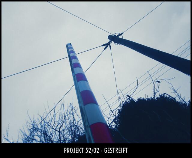 Projek 52/02 - Gestreift