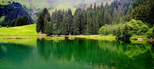 trees panorama france mountains alps reflection green water colors montagne alpes french landscape lago photography photo eau europa europe photographie shot image pentax earth couleurs altitude lac vert panoramic best explore arbres paysage reflets forêt hautesavoie