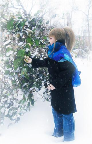 winter's berry