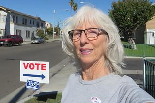 Vote, Vote, Vote  . . .  OR . . .  Don't Complain