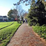 Hadden Park Seawall
