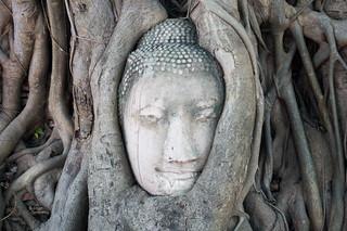 Image of Wat Phra Mahathat near Phra Nakhon Si Ayutthaya. thaïlande ayutthaya changwatphranakhonsiayutthaya changwatphranakhonsiayuttha