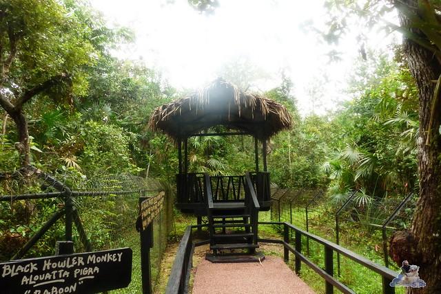 Belize Zoo 19.11.2014 77
