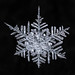 Snowflake-a-Day #8 by Don Komarechka