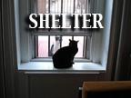 shelter-pf