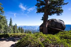 Kings Canyon & Sequoia - 113
