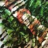 Caprese #caprese #salada #almoco #aguasdelindoia