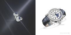 hand(0.0), sapphire(0.0), jewellery(0.0), gemstone(0.0), diamond(1.0), platinum(1.0), circle(1.0),