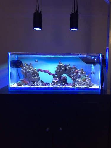 Ikea Grundtal Countertop Lighting ~ Sanbed's Custom Nano  Members Aquariums  Nano Reef com Forums