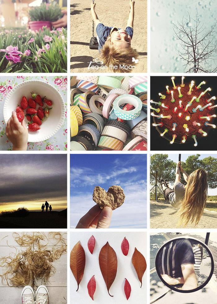 proyecto 365 en instagram