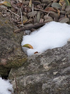 Snow among the Rocks