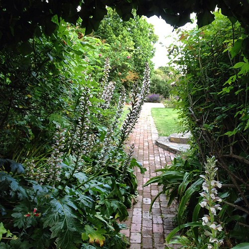 To the Heart Garden #Heide