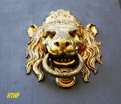 carving, art, sculpture, metal, head, door knocker, bronze, brass,