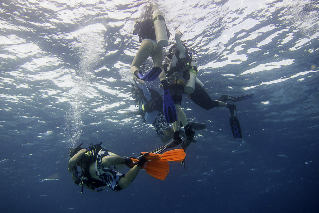 Scuba divers--aren't they funny?