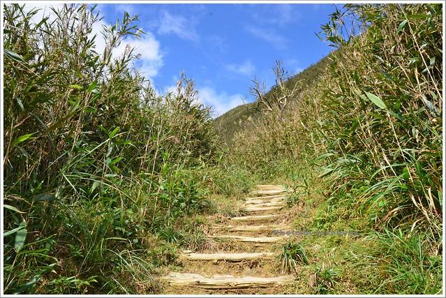 聖母山莊聖母登山步道宜蘭礁溪017-DSC_6685