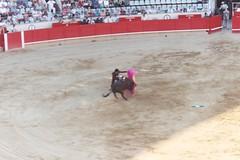 sport venue(0.0), performing arts(0.0), animal sports(1.0), bull(1.0), event(1.0), tradition(1.0), sports(1.0), bullring(1.0), matador(1.0), performance(1.0), bullfighting(1.0),