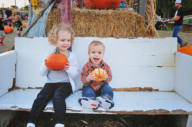 2014 Pumpkin Patch