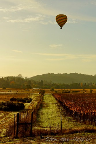 california sony napa hotairballoons winecountry yountville nex napavalleyballoons sel18200le stantherocker
