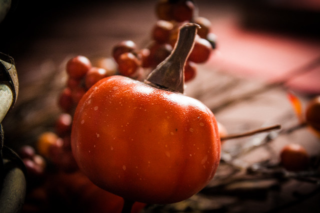 thanksgivingpreparationsnov2014