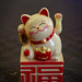 Lucky cat by benoitcops