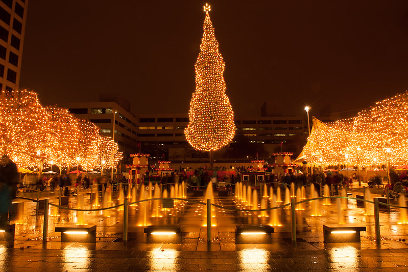 Northern Lights Christmas Tree Farm