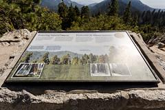 Kings Canyon & Sequoia - 383