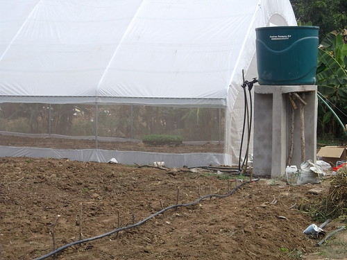 Greenhouse erected