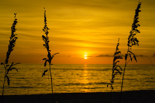 beach hotel nikon unitedstates florida naples d5100