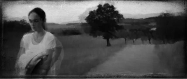 antonio•merini - The unabridged journals of the Country