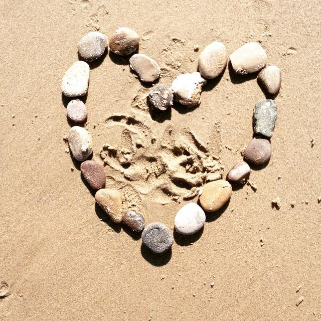 #foundart #beach #hiking #newyearsday