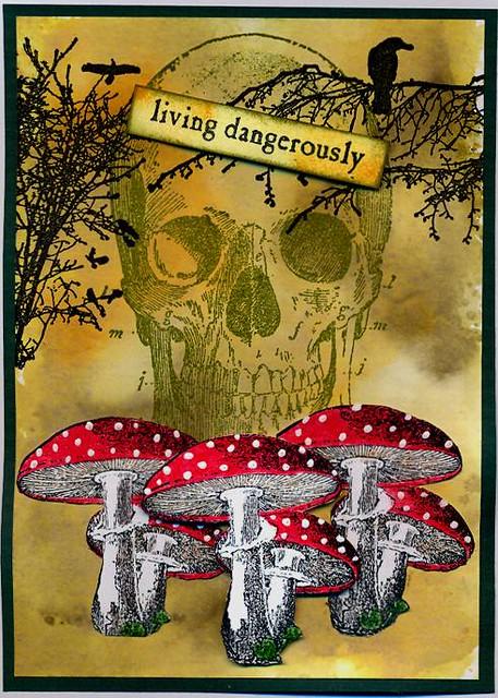 living in danger