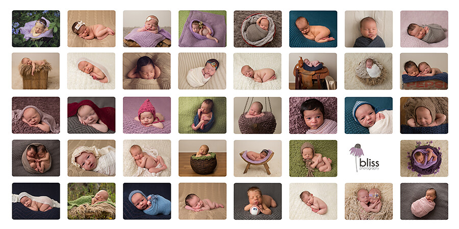 2014 bliss photography rochester newborn babies