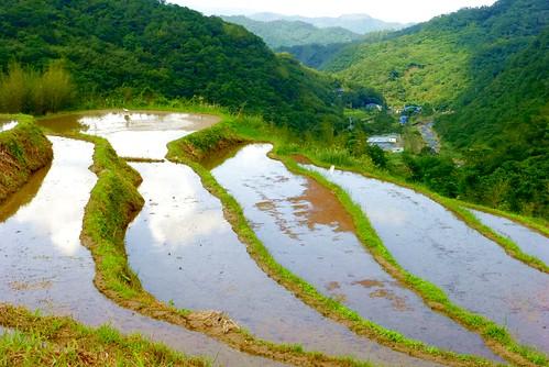 持續蓄水的梯田,可以調節水資源並創造水域棲地。(來源:人禾基金會)