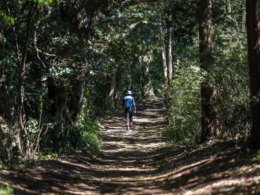 2016GWお散歩㉗_天園ハイキングコース