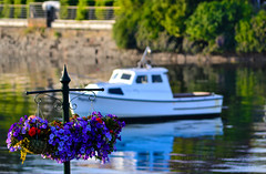 The Flowers and the Boat