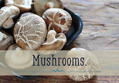 mushroms