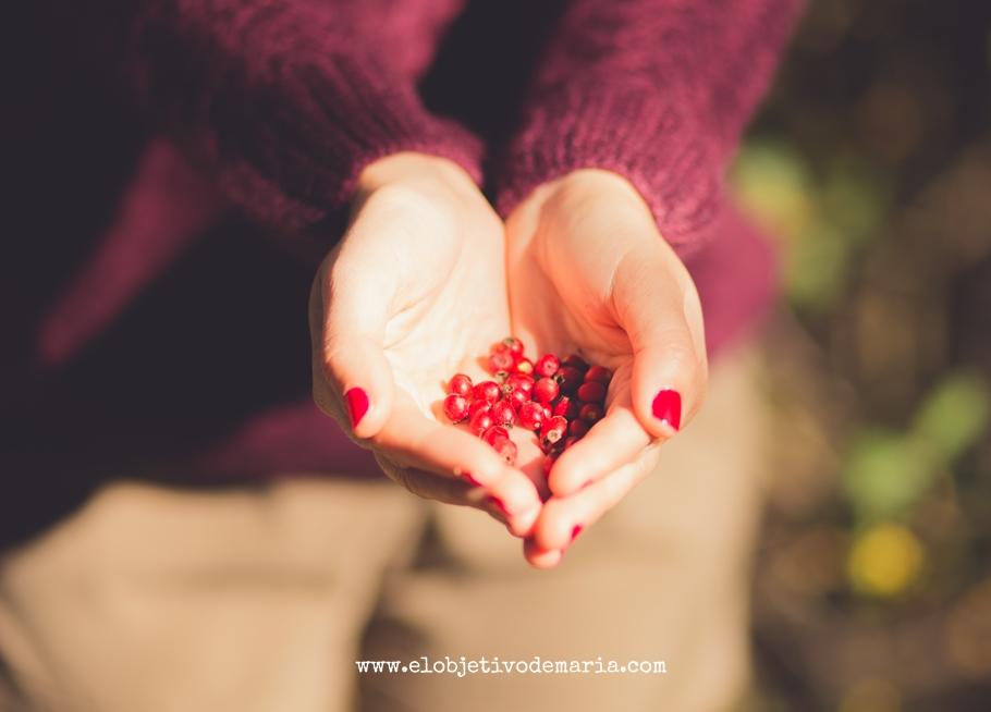 el otoño en tus manos