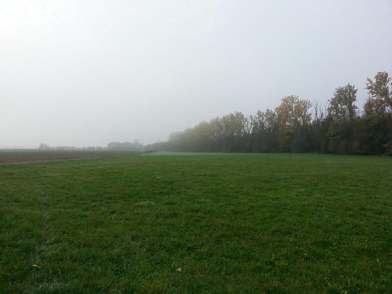304/365 Auf dem Rückzug: The Fog - Nebel des Grauens