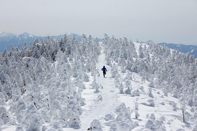 2014-03-09_00086_北横岳