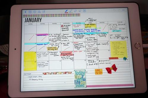 05digitalplannersetup-2015