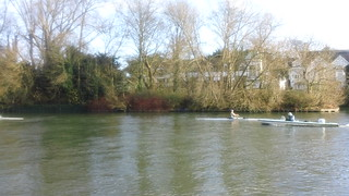 Rowing coaching, Maidenhead