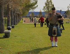 Veteran Bagpiper